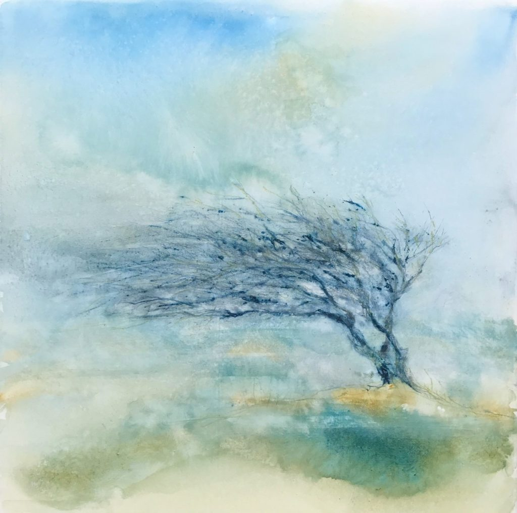 November Hawthorn,  Watercolour on Canvas,  61cm x 61cm. SOLD